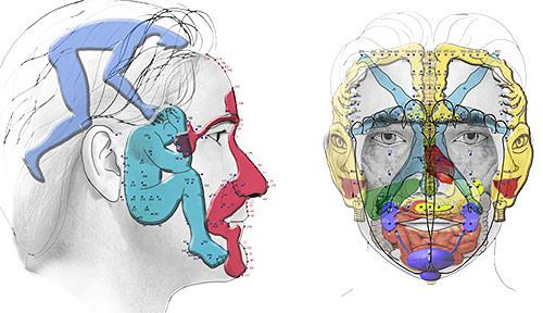 Planche-Face-Profil-communication.png